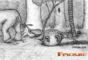 Поглощение слоненка